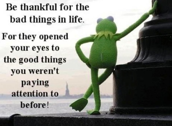 Kermit image010